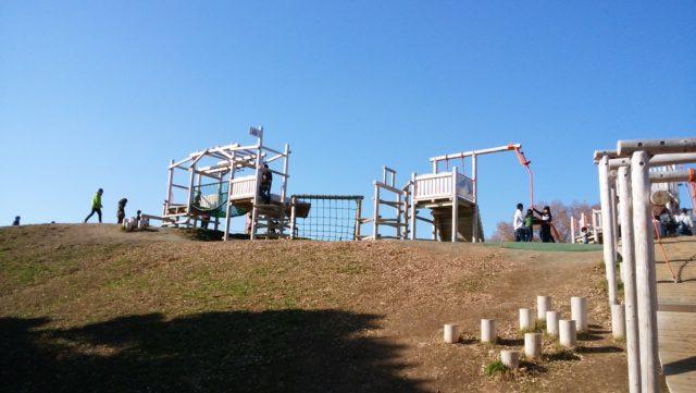 丘の上のアスレチック2